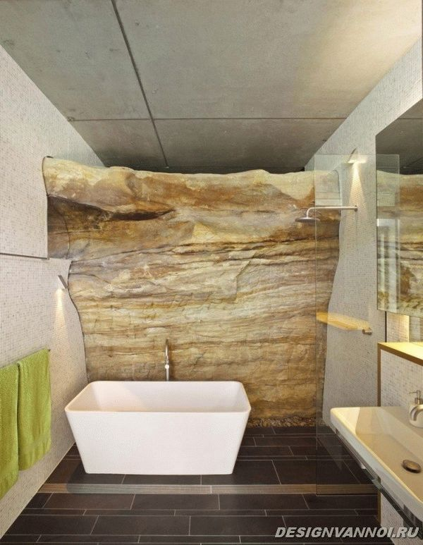 идеи дизайна ванной комнаты фото - 2
