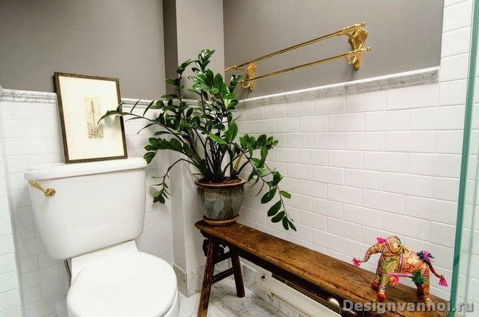 цветы для ванной комнате