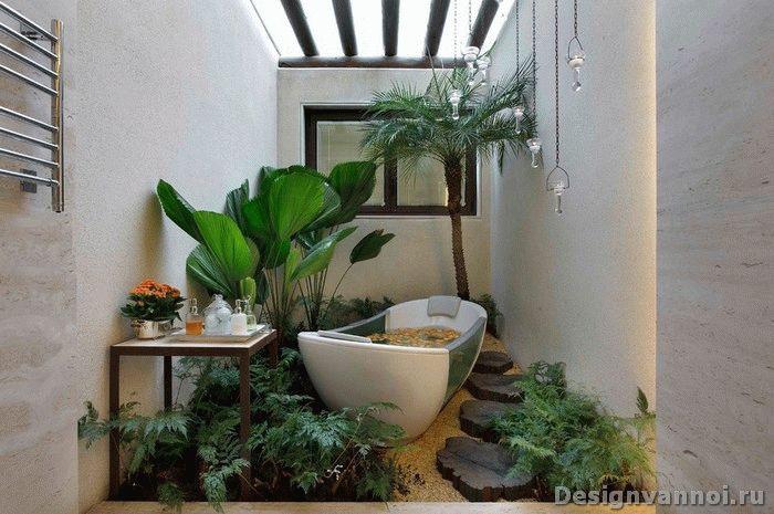цветы для ванной комнаты